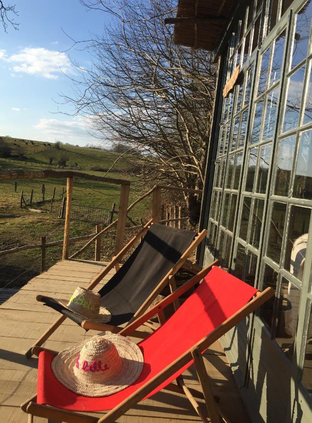 Vue sur la nature depuis la terrasse